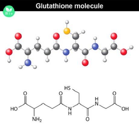 glutathion 123rf 47554251 anton lebedev