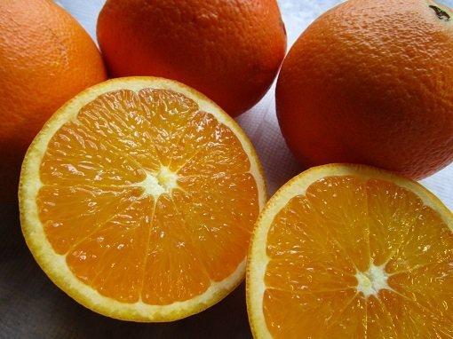 obst orangen